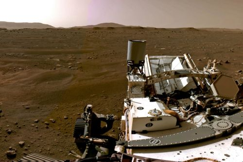Nasa scientists that landed Perseverance on Mars take part in Reddit AMA