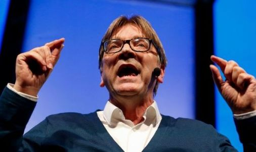Verhofstadt torn apart for praising EU recovery fund: 'We are laughing at you in Britain!'