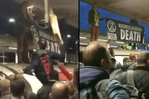 Watch as angry commuters drag Extinction Rebellion protester from top of tube train onto platform