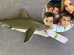 Rebecca Judd's twins Tom and Darcy, three, shove a tampon in their toy shark's mouth