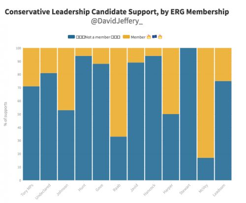 Who's supporting whom: David Jeffery's calculations. 4) ERG members
