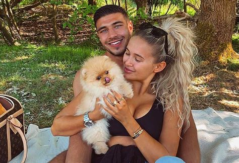 Molly-Mae Hague and Tommy Fury's new puppy dies just days after they bring him home