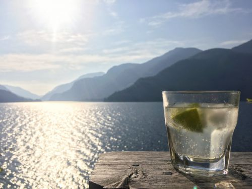 You Can Now Get Paid To Travel The World And Drink Gin