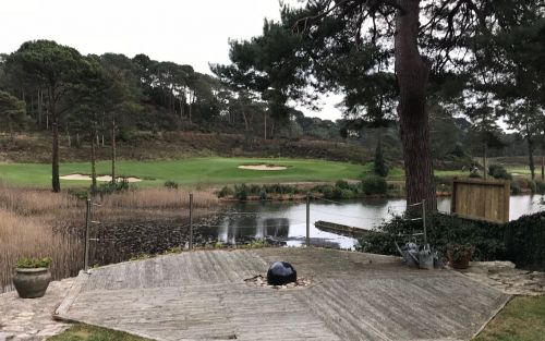 Golf club faces investigation after cutting down protected trees to improve the views of a lake