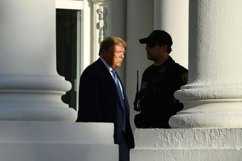 Trump visited White House bunker three times - but ONLY for 'inspection' as protests raged outside