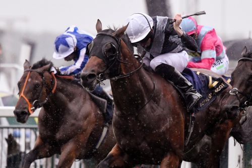 Antepost racing tips: Back Circus Maximus in soft ground QEII at Ascot on Saturday