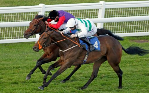Marlborough racing tips and best bets for Monday July 13