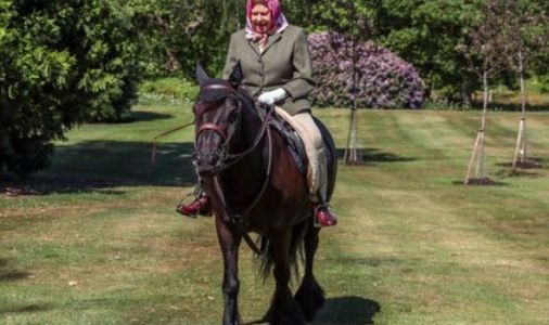 Queen beams as she enjoys her favourite hobby in first picture since going into lockdown