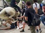 Houston cops launch investigation after police horse is seen trampling on a protester