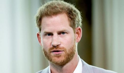 Prince Harry 'puts in four-hour shift' helping vulnerable on 'difficult day' in California