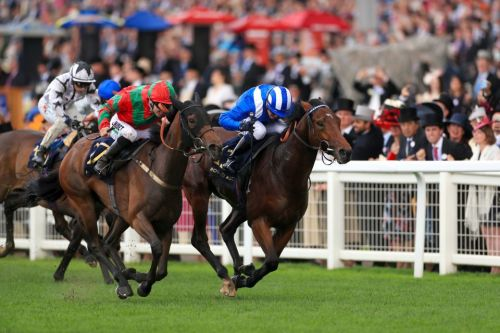 Royal Ascot 2019: Afaak goes one better than last year in Royal Hunt Cup thriller