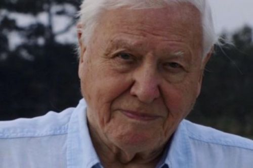 David Attenborough joins Instagram at the age of 94