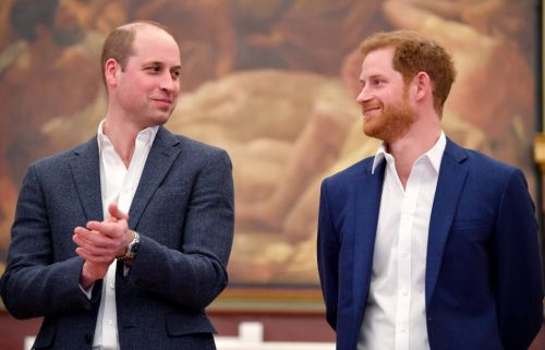 Harry and William 'to speak separately' as Princess Diana statue unveiled amid rift