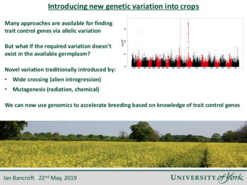 Slides from the Plant Genomics & Gene Editing Congress: Europe