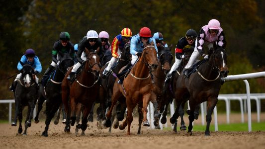 Horse Racing Tips: Timeform's three best bets at Wolverhampton and Lingfield on Tuesday