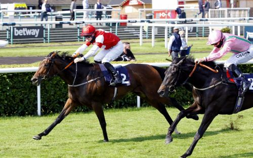 Marlborough racing tips and best bets for Friday, July 3