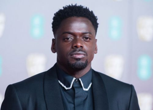 Black Panther star Daniel Kaluuya hints at 'heartbreaking' darker take on live action Barney movie