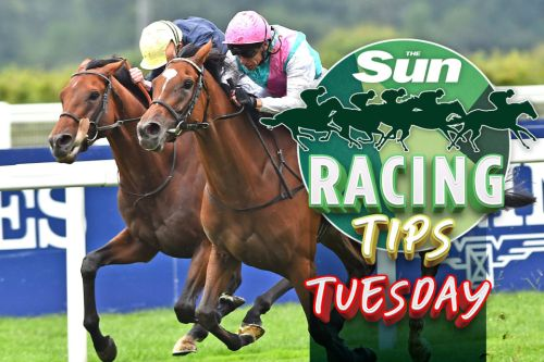 Racing tips: Templegate NAPS superstar jockey Neil Callan to bolt up on this 'hard to beat' Newcastle runner on Tuesday