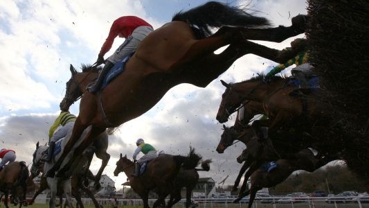 Bets of the Day: Ouro Banco is now race fit and further improvement expected