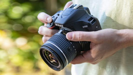 The best cameras for beginners in 2019