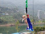 Chinese theme park forces a screaming pig to BUNGEE JUMP in shocking promotional stunt