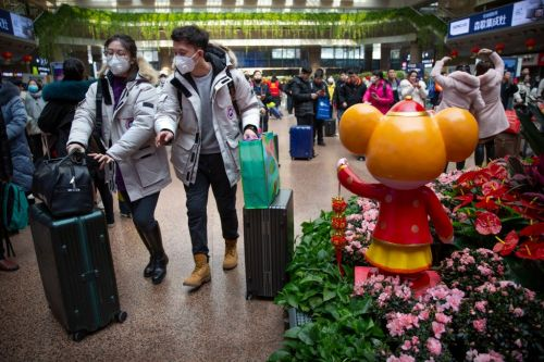 Where is the Coronavirus outbreak and is it safe to travel to Thailand, Japan and Australia?
