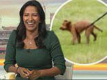 Strictly's Ranvir Singh is teased as her tangled dog is forced to walk BACKWARDS in video