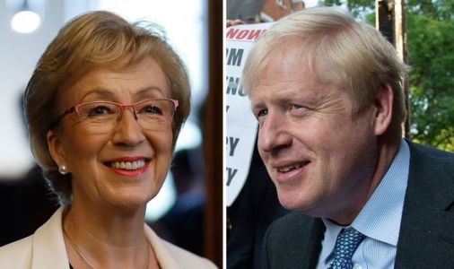 Andrea Leadsom opens up on Boris Johnson's Brexit plan - 'Agreed between all of us'