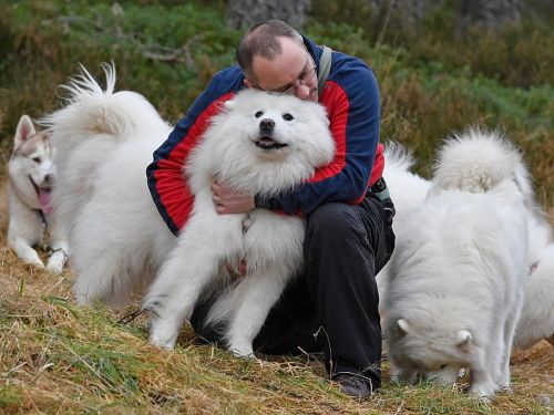 People have bonded with canines for centuries - and science can help explain why dogs are humans' best friend