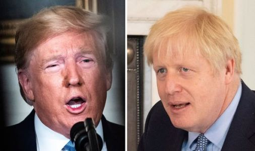 'Delusional!': Former White House aide laughs away chance of US post-Brexit trade deal