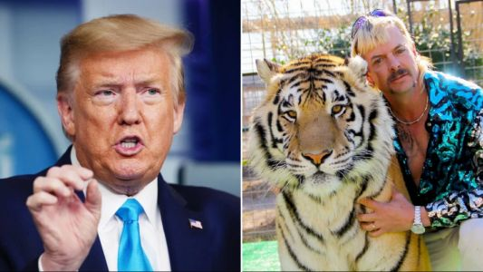 Donald Trump 'taking a look' at pardoning Tiger King's Joe Exotic