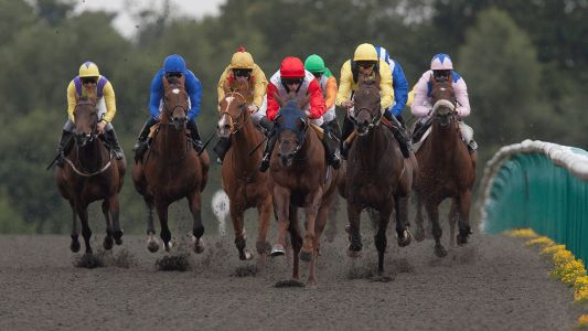 Today's Horse Racing Tips: Amjaady will relish this trip today at Lingfield