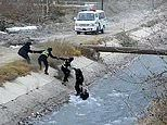 Police officers form a human ladder to rescue a boy from being washed away by a river