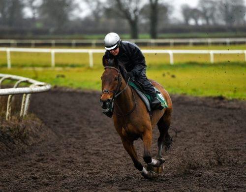 10-time Grade 1 winner Un De Sceaux retired due to suspensory ligament injury in blow to Willie Mullins' stable