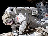 Blast! Space travel leaves you taller. but at risk of suffering chronic back pain, study shows
