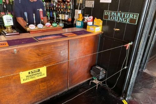 Pub installs electric fence at the bar to ensure people keep social distancing