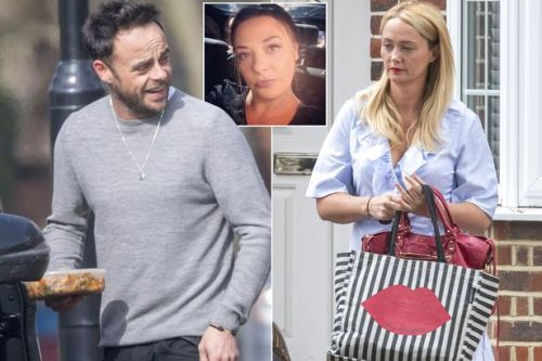 Ant McPartlin's estranged wife Lisa Armstrong 'suspected months ago' he was dating her pal after seeing packed lunch picture