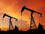 Soaring small caps: Fintech firm Tintra, gas storage project Harland & Wolff and Cornish Metals