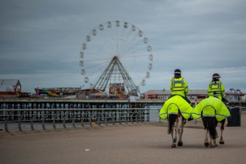 Man arrested for attempted murder after car driven into pedestrians on seafront