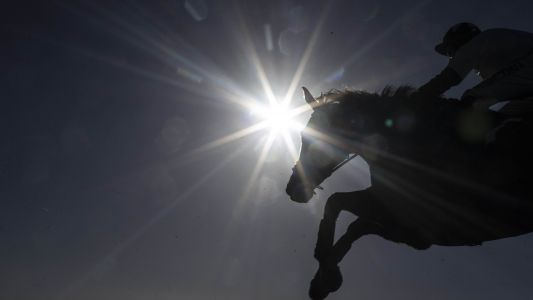 Timeform US SmartPlays: Sunday 24 March