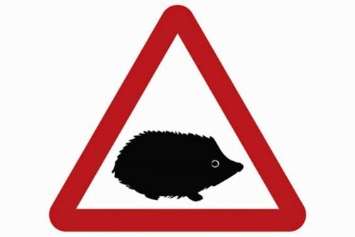 Beware of the hedgehog: new road signs to warn of small animals on road