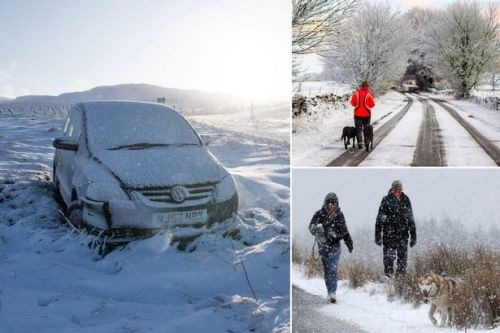 UK weather forecast: Britain blanketed by snow as Met Office issues yellow warning