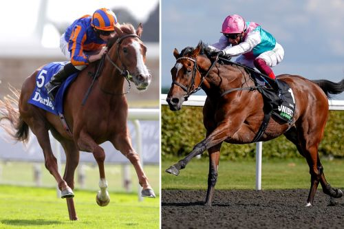 Arc de Triomphe racecard: Runners, riders, prices and odds for Sunday's Group 1 contest as Enable heads the betting