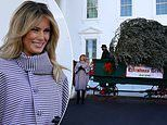 Melania Trump welcomes White House's Christmas tree for last time