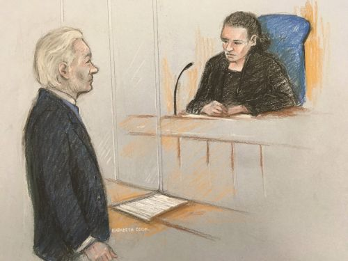 'I can't think properly': Assange fights back tears and struggles to say own name as he appears in court over US extradition