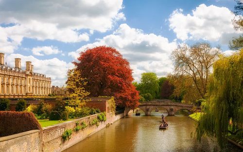 The best things to do in Cambridge, from botanical gardens to boat trips