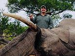 PETA releases video of trophy hunter shooting elephant as California votes on anti-trophy bill