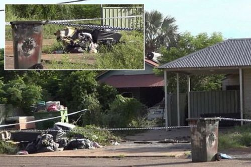 Witnesses watched on unaware as toddler, 2, was dying in horrific car fire