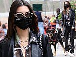 Emily Ratajkowski looks lovely in leather as she fetches lunch with the dog while baby stays at home
