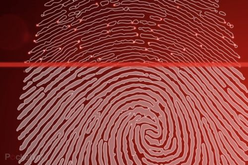 In-display fingerprint readers: How they work plus optical vs ultrasonic